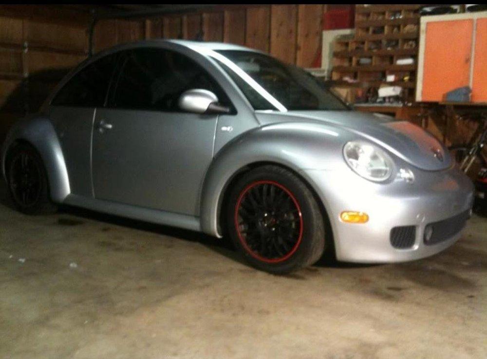 Beetle 2.jpg